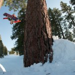 Dylan Thompson tree to tree transfer (P) Huggy