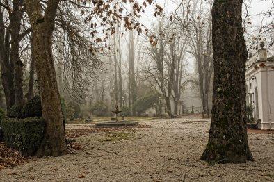 fontana-e-alberi-con-foglie-enrico-milanesi-fontecchio-04