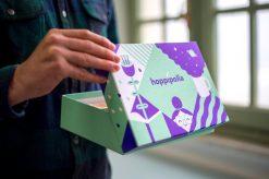 Hoppipolla_box-14-(4)