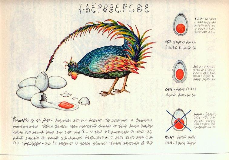 gallina che rompe le uova in in particolare del Codex Seraphinianus