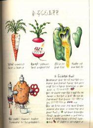 Ortaggi immaginari nelle pagine del Codex Seraphinianus