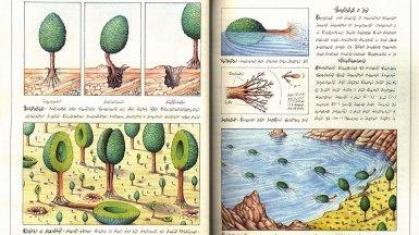 codex-seraphinianus-tavola-6