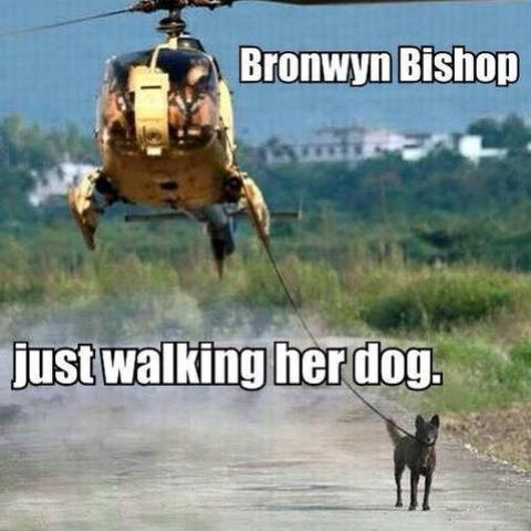 Bronwyn Bishop walking the dog