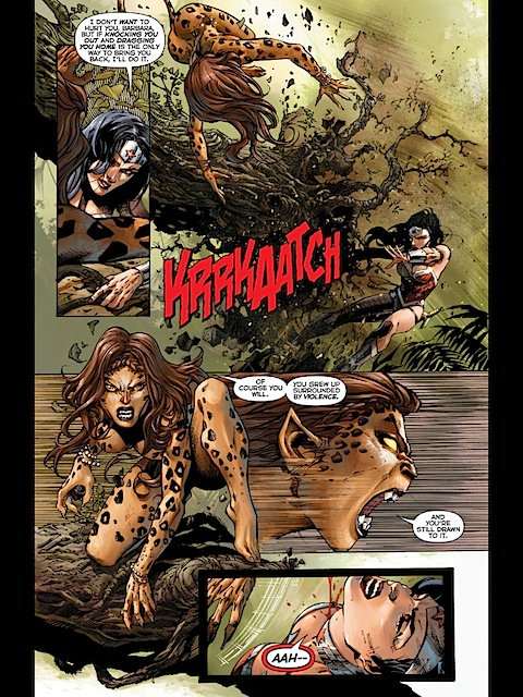 Wonder Woman and Cheetah fight