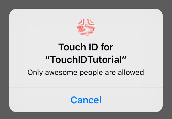 TouchID form