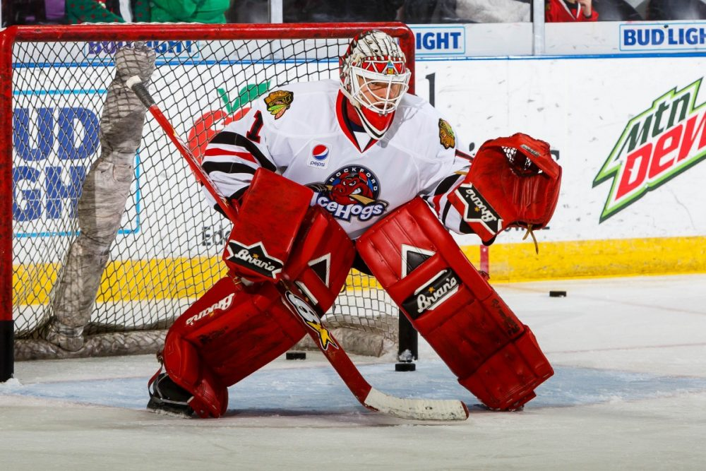 AHL: IceHogs Continue Point-Streak, Close Gap In Central Division