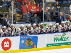 The Rink 45555905932_88a93f47dc_k-e1540827791326 Rockford IceHogs Salvage One Point Over Weekend Victor Ejdsell Rockford IceHogs Matthew Highmore Dylan Sikura Collin Delia Anton Forsberg