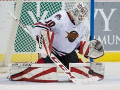 The Rink tomkins-1-e1540484240267 Fuel's Matt Tomkins Named ECHL Goaltender of the Week Matt Tomkins Indy Fuel