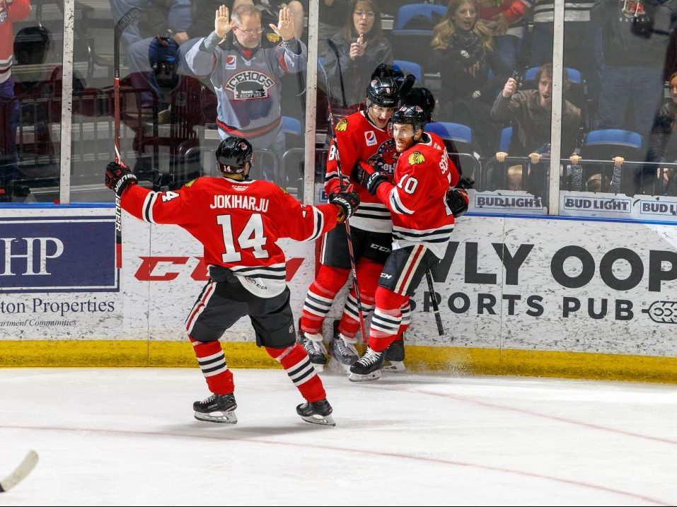 Nolan Valleau 2016-17 Rockford IceHogs IJshockey Orlando Solar Bears