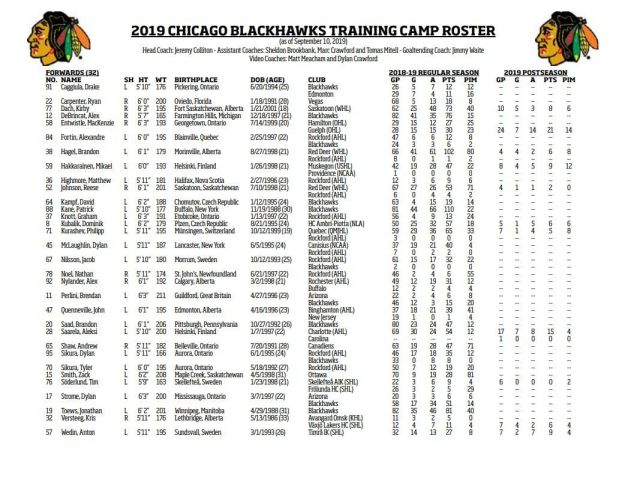 Blackhawks forward 2019 training camp