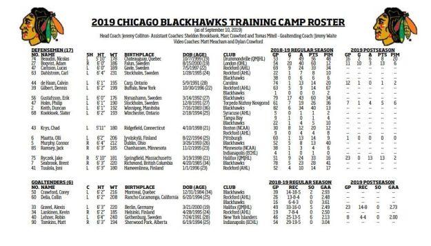 Blackhawks defensemen and goalies for 2019 training camp.