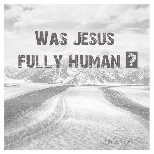 Was Jesus fully Human?