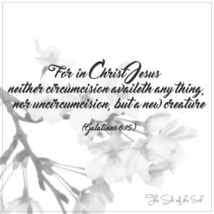 Circumcision, new creation