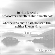 In Him is no sin, who abides in Him sin not