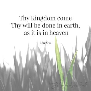 Thy Kingdom come, Thy will be done on earth as it is in heaven