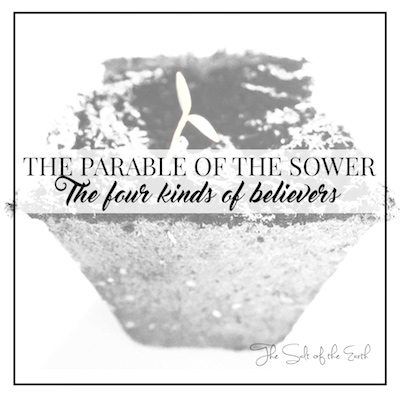 Parable of the sower; four kinds of believer