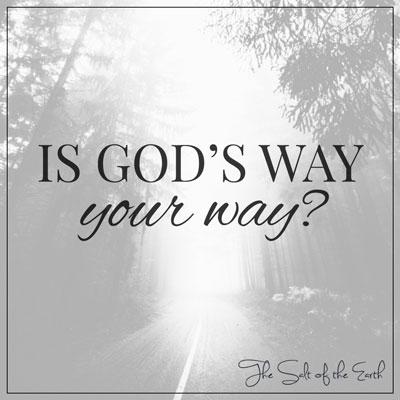 Gods way your way