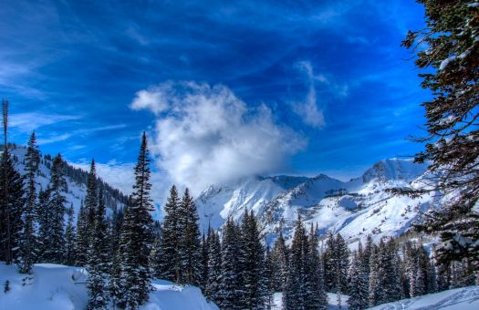 Alta is another of the resorts that the IKON pass will offer. Photo: Alterra Mountain Cmopany.