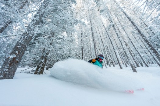 Powder in Taos, now yours if you get the IKON Pass.