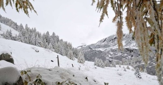 SRF Meteo photo - They caution that on Monday and Tuesday there are risks of large rainfall across some Alpine regions.