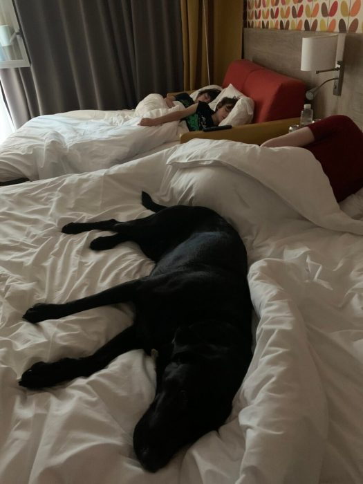 All sound asleep! We needed to get going! The Drive to Our Summer Holiday on Covid-19 Times.