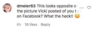 Fans said Jeana's photo 'looks opposite' of Vicki's post