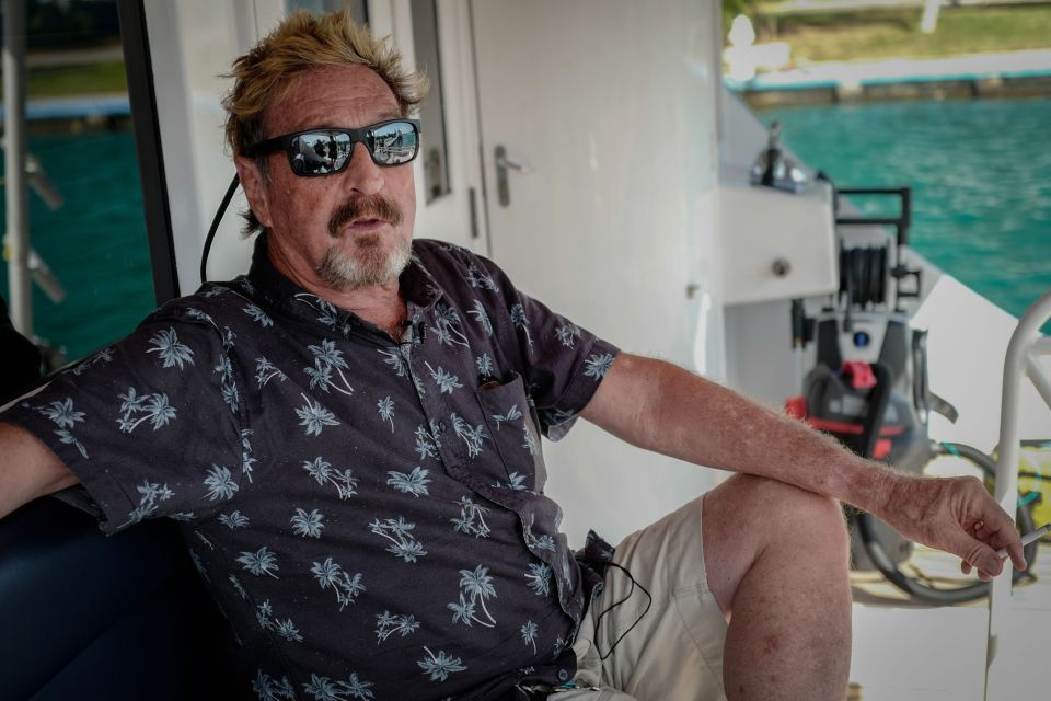 McAfee hanged himself in jail, according to reports