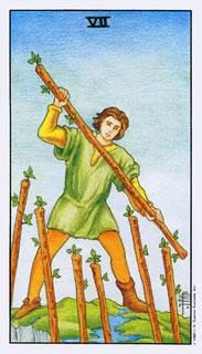 Betekenis van de tarotkaart staven zeven bij het kaartleggen