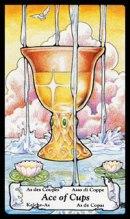 betekenis tarotkaart Bekers Aas