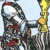 de betekenis van de vissen op de tarotkaart bekers ridder