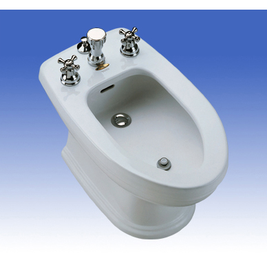 Image Result For What Is The Name Of The Toilet That Sprays Water