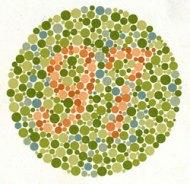 Lena Dunhams food diary patterns - the10principles