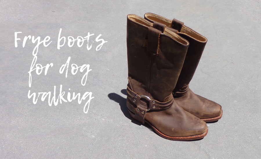 Dress Up - Frye Boots for Dog Walking
