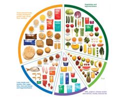 Australian Food Guide