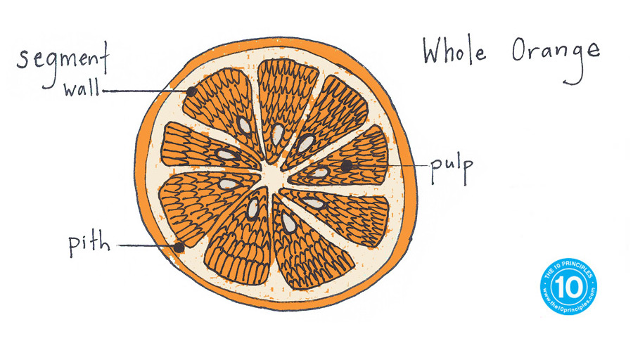 When oranges are processed to make juice, the fiber is removed and additives are put in