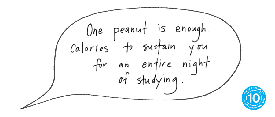 One peanut is enough calories to sustain you for an entire night of studying