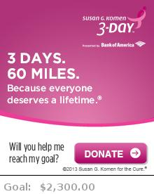 Help me reach my goal for the Susan G. Komen Michigan 3-Day
