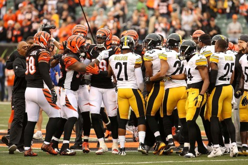 2016 AFC North Preview
