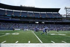 The Georgia State Panthers: Homeward Bind