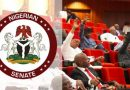Senate wants age limit scrapped for job seekers