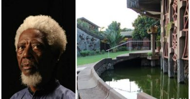 Demas Nwoko: The renowned architect decolonising Nigerian design 4