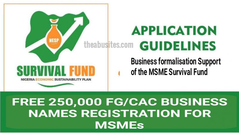 How To Benefit From Free 250,000 FG/CAC Business Name Registration for MSMEs 1
