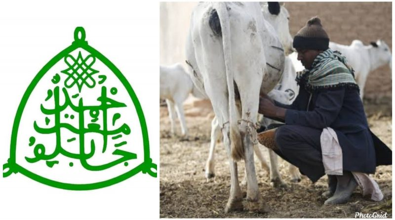NAPRI/ABU to Partner Fulani Herders on Milk Production 1