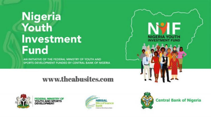 How to Apply for N75Bn Nigeria Youth Investment Fund (NYIF) Scheme 2