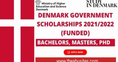 Denmark Government Scholarships 2021/2022 for Non-EU Students 4