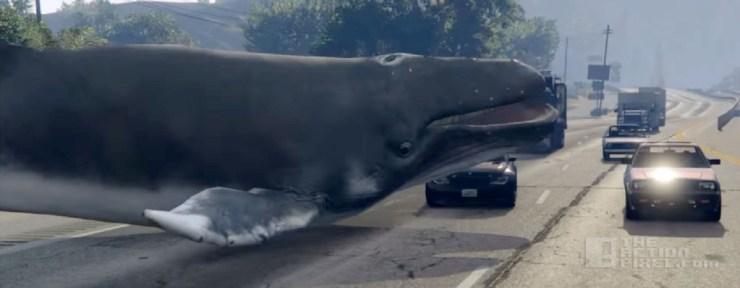 whale GTA V mod. rockstar. the action pixel. @theactionpixel