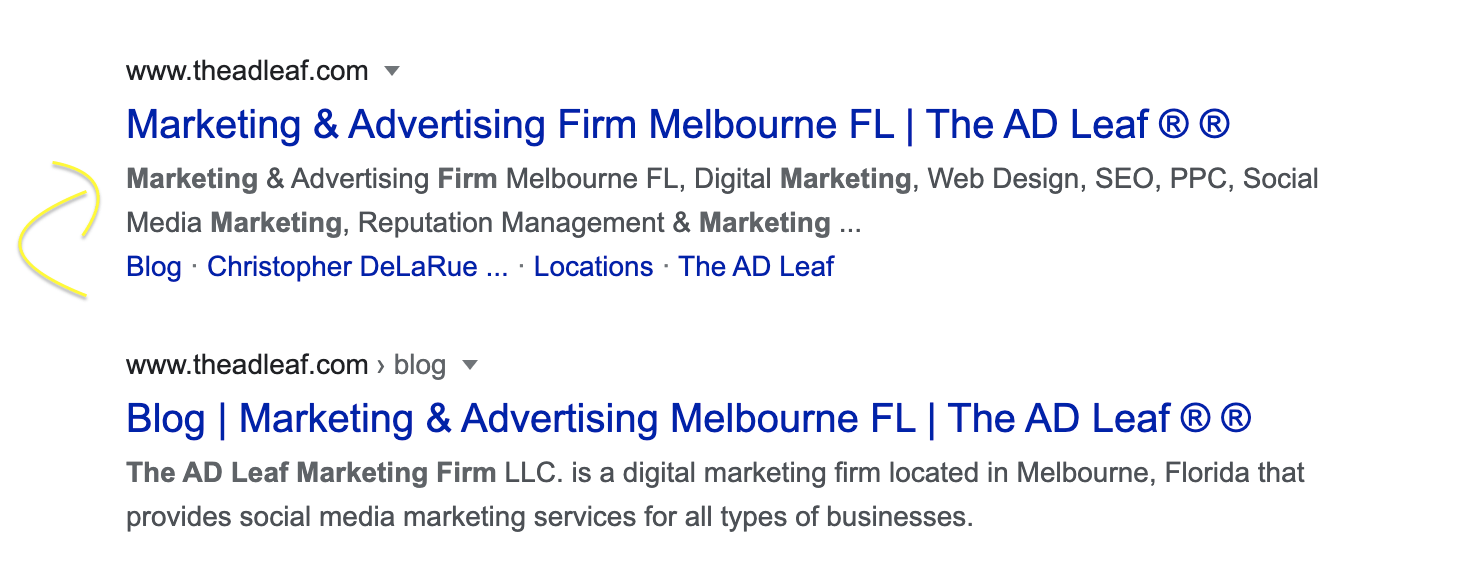 the-ad-leaf-google-marketing