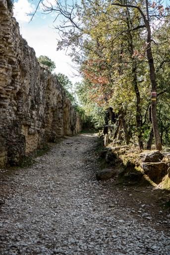 Cani- rando Pont du Gard