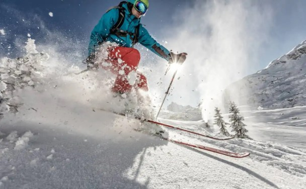 downhill skis to have