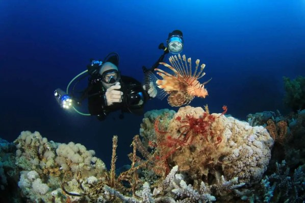 best housing for underwater camera